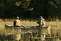 00280-067.17 Duck Hunting:  Hunter in rear of canoe is paddling while hunter in front has gun ready.  Rice, jump shoot, waterfowl.