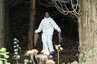 Pictured: A scenes of crimes officer searching for evidence in the woods where the body of Rebecca Aylward was discovered. Monday 25 October 2010<br /> Re: 15 year old Rebecca Aylward has been found murdered in woodlands near Aberkenfig south Wales. Two fifteen year old men have been arrested. Aylward was originally from nearby Maesteg.