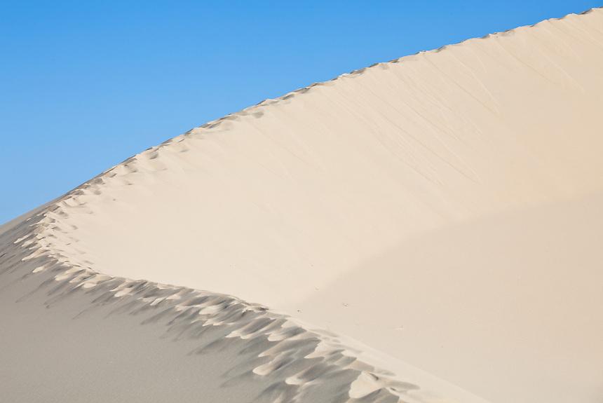 Sand Dune Mojave National Preserve
