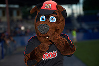 Batavia Muckdogs mascot Homer before a game against the Staten Island Yankees on August 27, 2016 at Dwyer Stadium in Batavia, New York.  Staten Island defeated Batavia 13-10 in eleven innings. (Mike Janes/Four Seam Images)
