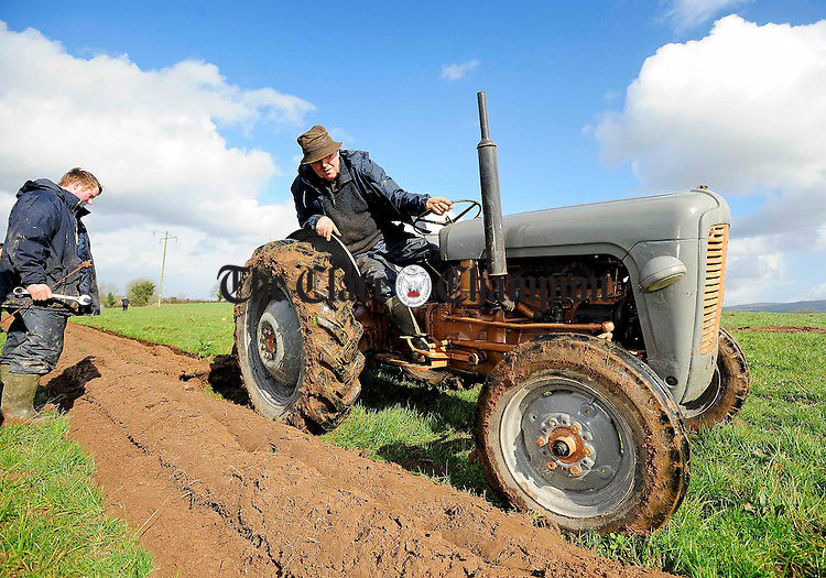 Clare Ploughing Association President Louis Quinn(on tractor) and his son Patrick during the ploughing match at O'Callaghans Mills.pic Arthur Ellis.