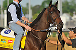 Brilliant Speed on the Churchill Downs track on April 30, 2011..