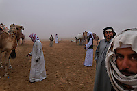 Bedouin trainers wait with camels in the early morning before the Camel Beauty contest begins for the day.