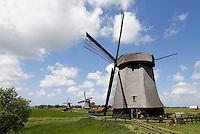 Nederland, Schermerhorn, 2015 06 03. Molens in de Schermerpolder. Op de voorgrond Bovenmolen E. The Netherlands, Schermerhorn, 2015 06 03 . Windmills in Schermerhorn