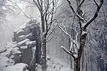 Europa, DEU, Deutschland, Hessen, Rhoen, Kuppenrhoen, Poppenhausen ( Wasserkuppe ), Steinwand, Naturpark Hessische Rhoen, Biosphaerenreservat Rhoen, Winter, Schnee, Steinwand, Felsen, Kategorien und Themen, Natur, Umwelt, Landschaft, Jahreszeiten, Stimmungen, Landschaftsfotografie, Landschaften, Landschaftsphoto, Landschaftsphotographie, Wetter, Wetterelemente, Wetterlage, Wetterkunde, Witterung, Witterungsbedingungen, Wettererscheinungen, Meteorologie, Wettervorhersage<br /> <br /> [Fuer die Nutzung gelten die jeweils gueltigen Allgemeinen Liefer-und Geschaeftsbedingungen. Nutzung nur gegen Verwendungsmeldung und Nachweis. Download der AGB unter http://www.image-box.com oder werden auf Anfrage zugesendet. Freigabe ist vorher erforderlich. Jede Nutzung des Fotos ist honorarpflichtig gemaess derzeit gueltiger MFM Liste - Kontakt, Uwe Schmid-Fotografie, Duisburg, Tel. (+49).2065.677997, ..archiv@image-box.com, www.image-box.com]