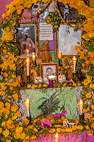 Oaxaca; Mexico; North America. Day of the Dead Celebrations.  Altar to family Ancestors, covered in Marigolds, the flower traditionally used to honor the dead.
