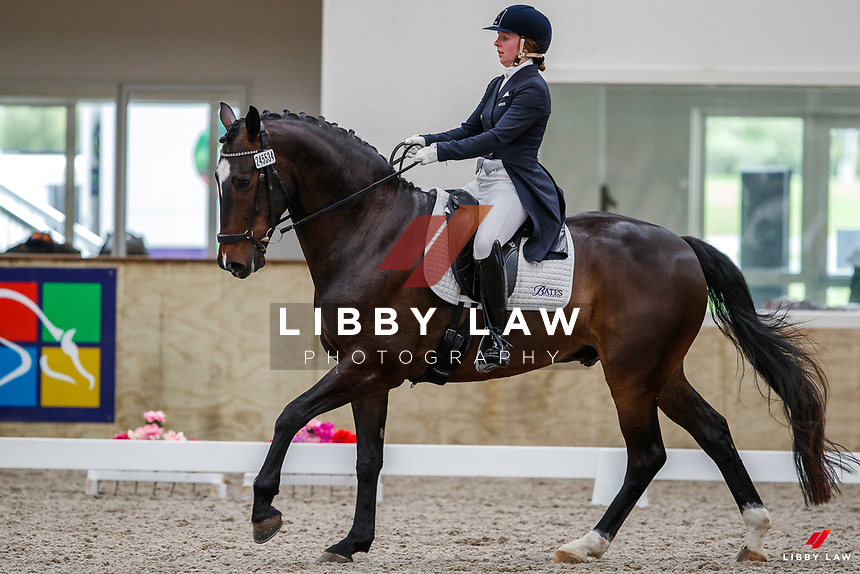 NZL-Anya Noble rides Geronimo Star. Brett Kendall & Rosemary Carter Bates Open Medium Tour Championship Round 1 -Test Int AB MFS. 2020 NZL-Bates Saddles NZ Dressage Championships. NEC Taupo. Saturday 21 November 2020. Copyright Photo: Libby Law Photography