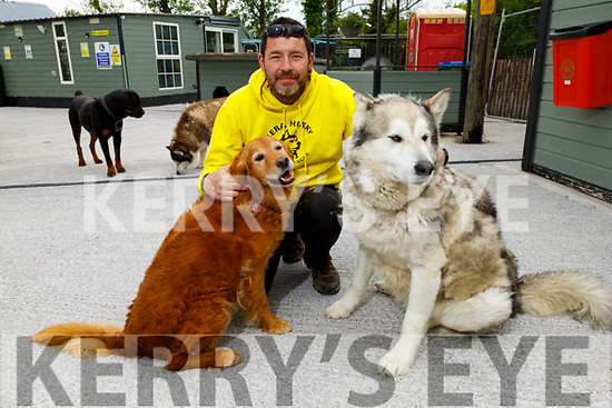 Maurice Enright of Sera Husky and Animal Rescue, at his Rescue Centre on Tuesday with Jessie and Drifter as he launches his Sunday's online 'Family Funday'