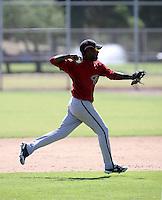 Reynaldo Navarro / Arizona Diamondbacks 2008 Instructional League..Photo by:  Bill Mitchell/Four Seam Images