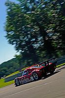 17-19  July, 2009, Birmingham, Alabama USA.#99 Gainsco/Bob Stallings Racing Pontiac/Riley of Jon Fogarty races to pole for Sunday's race..©2009 F.Peirce Williams, USA.