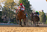 Havre de Grace (no. 4), ridden by Ramon Dominguez and trained by J. Larry Jones, wins the 25th running of the grade 3 Azeri Stakes for fillies and mares four years old and upward on March 19, 2011 at Oaklawn Park in Hot Springs, Arkansas.  (Bob Mayberger/Eclipse Sportswire)