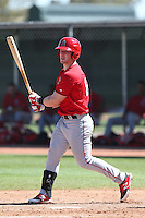 Zach Borenstein #86 of the Los Angeles Angels bats during a Minor League Spring Training Game against the Oakland Athletics at the Los Angeles Angels Spring Training Complex on March 17, 2014 in Tempe, Arizona. (Larry Goren/Four Seam Images)