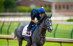 April 28, 2021: Maracuja gallops in preparation for the Kentucky Oaks at Churchill Downs in Louisville, Kentucky on April 28, 2021. EversEclipse Sportswire/CSM