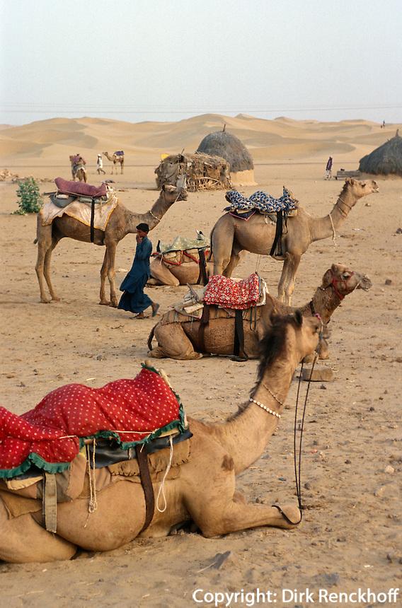 Indien, Sam-Dünen bei Jaisalmer (Rajasthan).