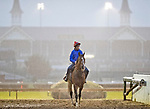 October 26, 2018 : Thunder Snow (IRE), trained by Saeed bin Suroor, exercises in preparation for the Breeders' Cup Classic  at Churchill Downs on October 26, 2018 in Louisville, Kentucky. Scott Serio/Eclipse Sportswire/CSM