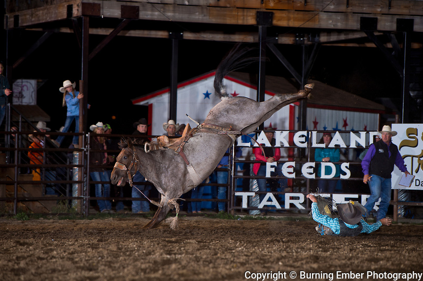 Chris Williams on Big Bend Rodeo's bucking horse 896 at the Darby Rodeo Associations Broncs N Barrels event.  September 14, 2018.  Photo by Josh Homer/Burning Ember Photography.  Photo credit must be given on all uses.