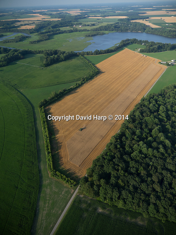 Fields of grain—corn, wheat, and soy—abut the banks of Tuckahoe Creek, the source of water for their irrigation.   Agriculture dominates the Choptank watershed, covering some 60% of it.