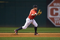 Georgia Bulldogs third baseman Mitchell Webb (6) on defense against the Charlotte 49ers at BB&T Ballpark on March 8, 2016 in Charlotte, North Carolina. The 49ers defeated the Bulldogs 15-4. (Brian Westerholt/Four Seam Images)