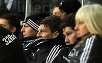 Saturday 19 January 2013<br /> Pictured: A delighted Michael Laudrup (2nd L) surrounded by members of his coaching team.<br /> Re: Barclay's Premier League, Swansea City FC v Stoke City at the Liberty Stadium, south Wales.