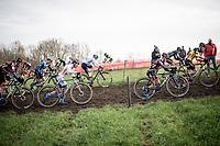 compact mens peloton at the beginning of the race<br /> <br /> 82nd Druivencross Overijse 2019 (BEL)<br />  <br /> ©kramon