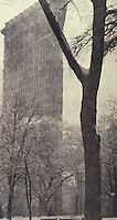 New York: The Flat Iron Building, 1903.  Alfred Stieglitz, photographer. Reference only.