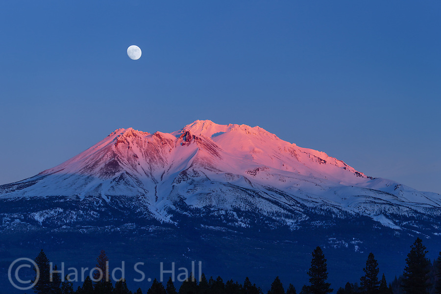 Mount Shasta dominates the landscape for 150 miles in northern California.  With no other mountains nearby, it abruptly rises 10,000 feet above the valley floor.  While this mountain can be the setting for dramatic lenticular clouds, on this evening the setting was clear skies allowing for a good view of a moon two days from being full.  The sun which is nearly set in this exposure, casts a red glow on Mount Shasta.
