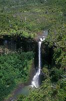 Aerial of a waterfall off of Koaie branch stream, Waimea Canyon, Island of Kauai