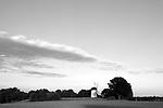 Europa, DEU, Deutschland, Nordrhein Westfalen, NRW, Rheinland, Niederrhein, Krefeld-Traar, Muehle, Windmuehle, Egelsbergmuehle, Abendstimmung bei Sonnenuntergang, Himmel, Wolken, Kategorien und Themen, Architektur, Architektonisch, Architekturstil, Bauwerk, Gebaeude, Historisch, Architekturfoto, Architekturphoto, Architekturfotografie, Architekturphotographie, Wetter, Himmel, Wolken, Wolkenkunde, Wetterbeobachtung, Wetterelemente, Wetterlage, Wetterkunde, Witterung, Witterungsbedingungen, Wettererscheinungen, Meteorologie, Bauernregeln, Wettervorhersage, Wolkenfotografie, Wetterphaenomene, Wolkenklassifikation, Wolkenbilder, Wolkenfoto<br /> <br /> [Fuer die Nutzung gelten die jeweils gueltigen Allgemeinen Liefer-und Geschaeftsbedingungen. Nutzung nur gegen Verwendungsmeldung und Nachweis. Download der AGB unter http://www.image-box.com oder werden auf Anfrage zugesendet. Freigabe ist vorher erforderlich. Jede Nutzung des Fotos ist honorarpflichtig gemaess derzeit gueltiger MFM Liste - Kontakt, Uwe Schmid-Fotografie, Duisburg, Tel. (+49).2065.677997, archiv@image-box.com, www.image-box.com]