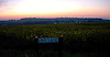 """I was on the way back to London one summer evening when I noticed the """"Love Lane"""" sign. Behind it is a field of Rape in flower and the setting sun colouring the evening sky.<br /> <br /> Stock Photo by Paddy Bergin"""