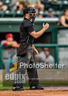 21 July 2019: Minor League Baseball umpire Paul Roemer works home plate during a game between the Tri-City ValleyCats and the Vermont Lake Monsters at Centennial Field in Burlington, Vermont. The Lake Monsters rallied to defeat the ValleyCats 6-3 in NY Penn League play. Mandatory Credit: Ed Wolfstein Photo *** RAW (NEF) Image File Available ***