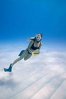free diver, Emily Sepeta, examining a horned helmet, Cassis cornuta, found on the sandy bottom, Makalawena, Kona Coast, Big Island, Hawaii, USA, Pacific Ocean, MR 490