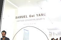 Samuel Gui Yang's Untitled (Ephemeral Study 1)