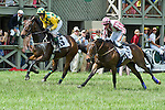 1 May 2010: The Whacker (IRE) and Paddy Young hold off Swimming River in the Infinitive Steeplethon at Virginia Gold Cup, The Plains, Va.