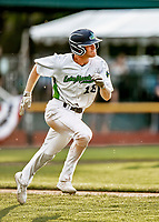 20 June 2021: Vermont Lake Monsters outfielder Sky Rahill, from Burlington, VT, watches his 8th inning home run clear the right field fence during a game against the Westfield Starfires at Centennial Field in Burlington, Vermont. Rahill went 1 for 2 with his homer accounting for all the team scoring as the Lake Monsters fell to the Starfires 10-2 at Centennial Field, in Burlington, Vermont. Mandatory Credit: Ed Wolfstein Photo *** RAW (NEF) Image File Available ***