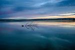 Idaho, Southwest, Elmore County, Grandview. Calm water and pre-dawn light on C.J. Strike Reservoir at Jacks Creek Sportmans access area.
