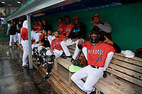 Batavia Muckdogs (counter clockwise) Brayan Hernandez, Julio Frias, Edgar Martinez, Samuel Castro, Gerardo Nunez, Harrison DiNocola, Igor Baez in the dugout for a rain delay during a NY-Penn League game against the Auburn Doubledays on June 15, 2019 at Dwyer Stadium in Batavia, New York.  Batavia defeated Auburn 7-5.  (Mike Janes/Four Seam Images)