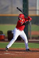 AZL Reds Wendell Marrero (31) at bat during an Arizona League game against the AZL Athletics Green on July 21, 2019 at the Cincinnati Reds Spring Training Complex in Goodyear, Arizona. The AZL Reds defeated the AZL Athletics Green 8-6. (Zachary Lucy/Four Seam Images)