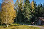 Germany, Upper Bavaria, Werdenfelser Land, above Mittenwald: hiking region near Lake Wildensee | Deutschland, Bayern, Oberbayern, Werdenfelser Land, oberhalb von Mittenwald: Wandergebiet beim Wildensee auf dem Hohen Kranzberg (Wettersteingebirge)