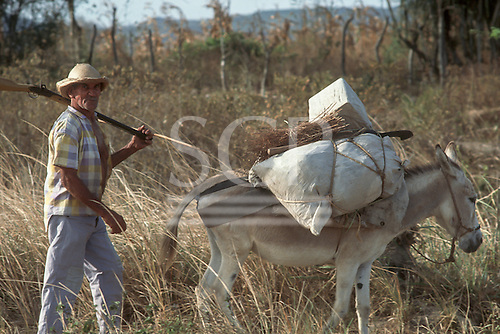Man carrying his shotgun over his shoulder with his donkey laden with produce.