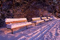 Stanley Park, Vancouver, BC, British Columbia, Canada, Winter - Snow Covered Benches at Sunset along Stanley Park Seawall