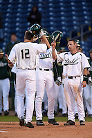 USF Bulls catcher Levi Borders (12) greeted by Luke Borders (4) and Kyle Teaf (3) after a home run during a game against the Louisville Cardinals on February 14, 2015 at Bright House Field in Clearwater, Florida.  Louisville defeated USF 7-3.  (Mike Janes/Four Seam Images)