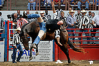 USA. Angola. 12th October 2008..A prisoner is thrown from a horse..©Andrew Testa/Panos