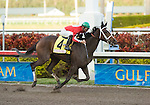 30 January 2010: Sweet Repent and jockey Manoel Cruz after the Sunshine Millions Distaff Stakes at Gulfstream Park in Hallandale Beach, FL.