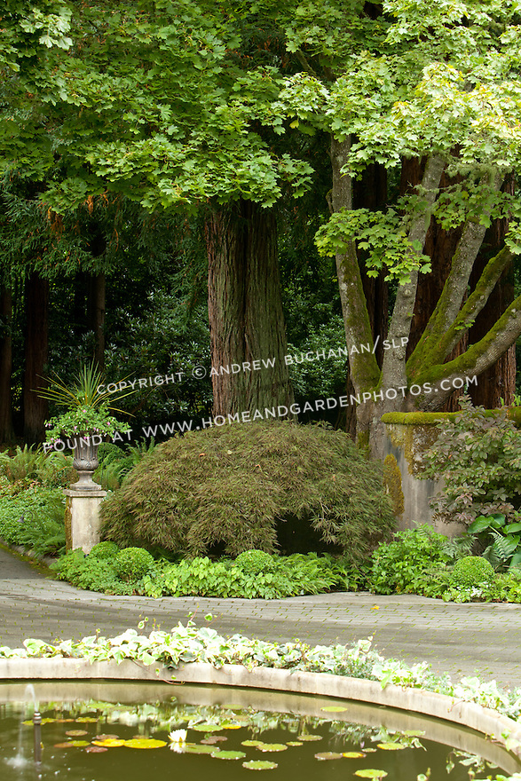 A driveway curves around a lily pad-covered pond and lush green border.