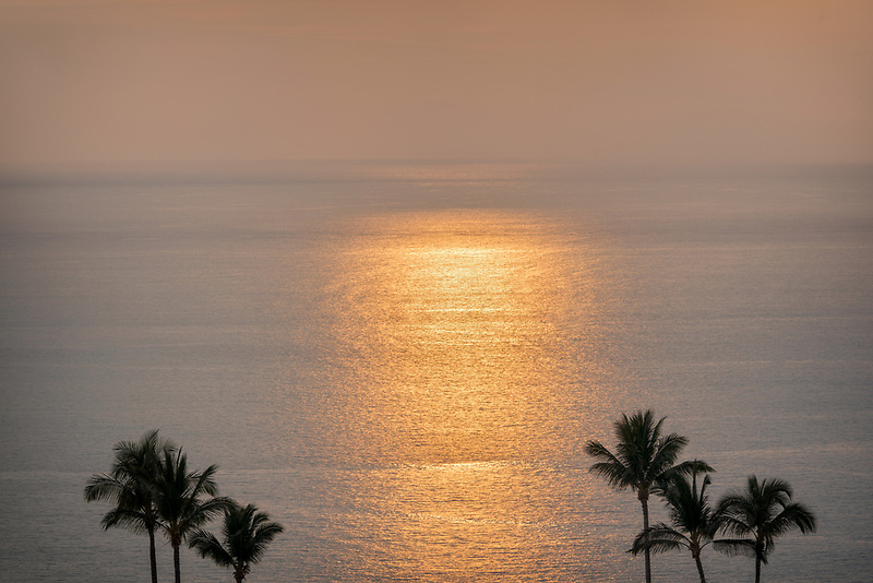 Sunset and palm trees. Hawaii, The Big Island