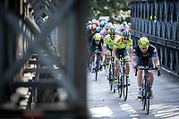 peloton<br /> <br /> 23th Memorial Rik Van Steenbergen 2019<br /> One Day Race: Beerse > Arendonk 208km (UCI 1.1)<br /> ©kramon23th Memorial Rik Van Steenbergen 2019<br /> One Day Race: Beerse > Arendonk 208km (UCI 1.1)<br /> ©kramon