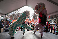 Dragon and Lion Dance, Chinese Lunar New Year, Chinatown, Seattle, WA, USA.