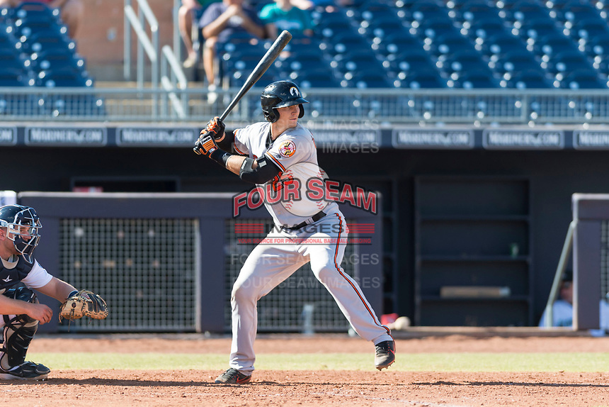Glendale Desert Dogs catcher Martin Cervenka (25), of the Baltimore Orioles organization, at bat during an Arizona Fall League game against the Peoria Javelinas at Peoria Sports Complex on October 22, 2018 in Peoria, Arizona. Glendale defeated Peoria 6-2. (Zachary Lucy/Four Seam Images)