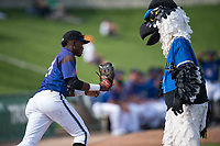 Missoula Osprey left fielder Jesus Munoz (23) gets a high five from Ollie Osprey before a Pioneer League game against the Orem Owlz at Ogren Park Allegiance Field on August 19, 2018 in Missoula, Montana. The Missoula Osprey defeated the Orem Owlz by a score of 8-0. (Zachary Lucy/Four Seam Images)