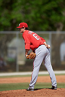 Washington Nationals pitcher Matt Tindall (61) looks in for the sign during a minor league Spring Training game against the St. Louis Cardinals on March 27, 2017 at the Roger Dean Stadium Complex in Jupiter, Florida.  (Mike Janes/Four Seam Images)